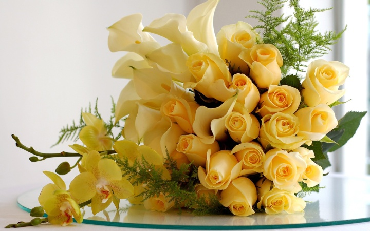 bunch_of_yellow_roses_1920x1200