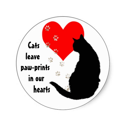cats_leave_paw_prints_in_our_hearts_stickers-radbbcb3787104d2b875d8683ec62cea4_v9waf_8byvr_512