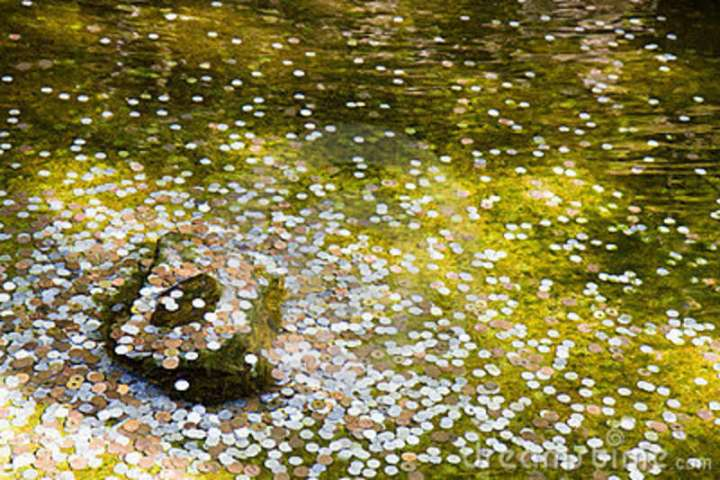 coins-wishing-well-kyoto-9390252