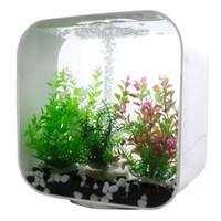 small-desktop-acrylic-fish-tank-square-water